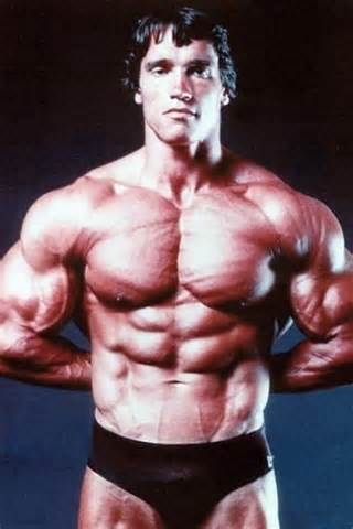 INFOPEDIA: Arnold Schwarzenegger workout routine