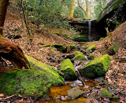 Waterfall, Alderley Edge