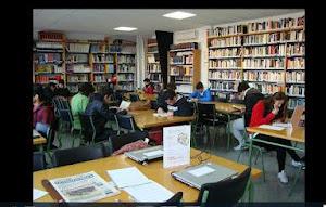 Biblioteca Sa Colomina