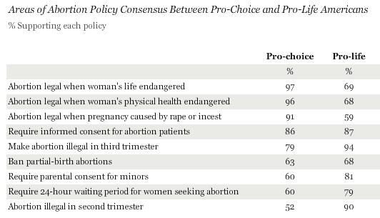 argumentative essays on abortion pro life