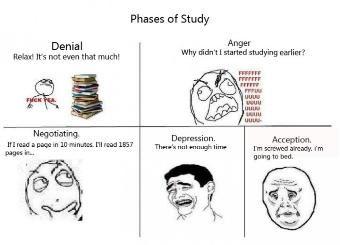 Phases Of Study - Denial Anger Negotiating Depression Acception Jokes