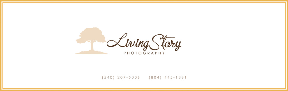 Virginia Portrait Photographer, Wedding Photographer and Commercial Photographer