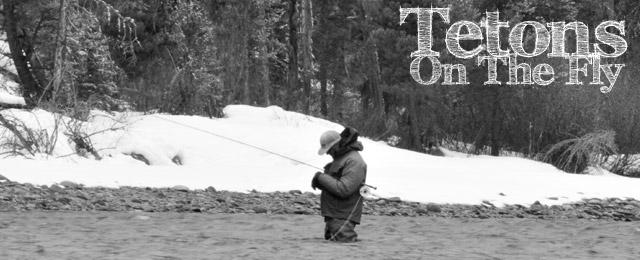 Tetons On the Fly