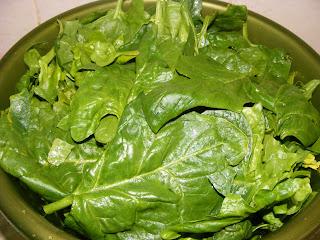 retete si preparate culinare din spanac proaspat si verde de gradina,