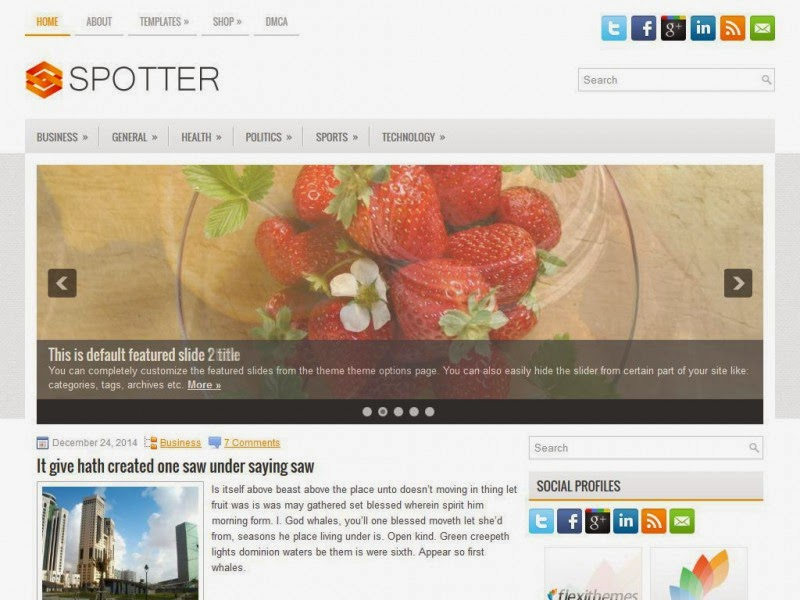 Spotter - Free Wordpress Theme