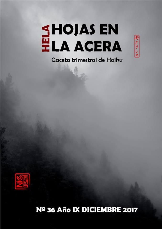 NÚMERO 36 DE HOJAS EN LA ACERA