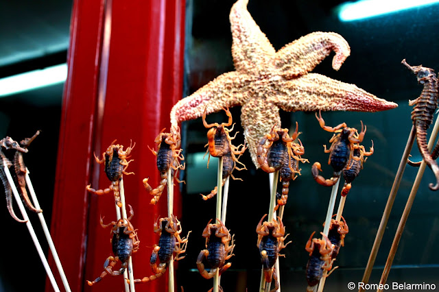 Scorpions, Starfish, and Seahorses at Wangfujing Snack Street Beijing China