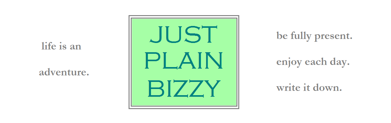 justplainbizzy