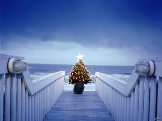 Free Download Beautiful Christmas Tree Lights Wallpaper