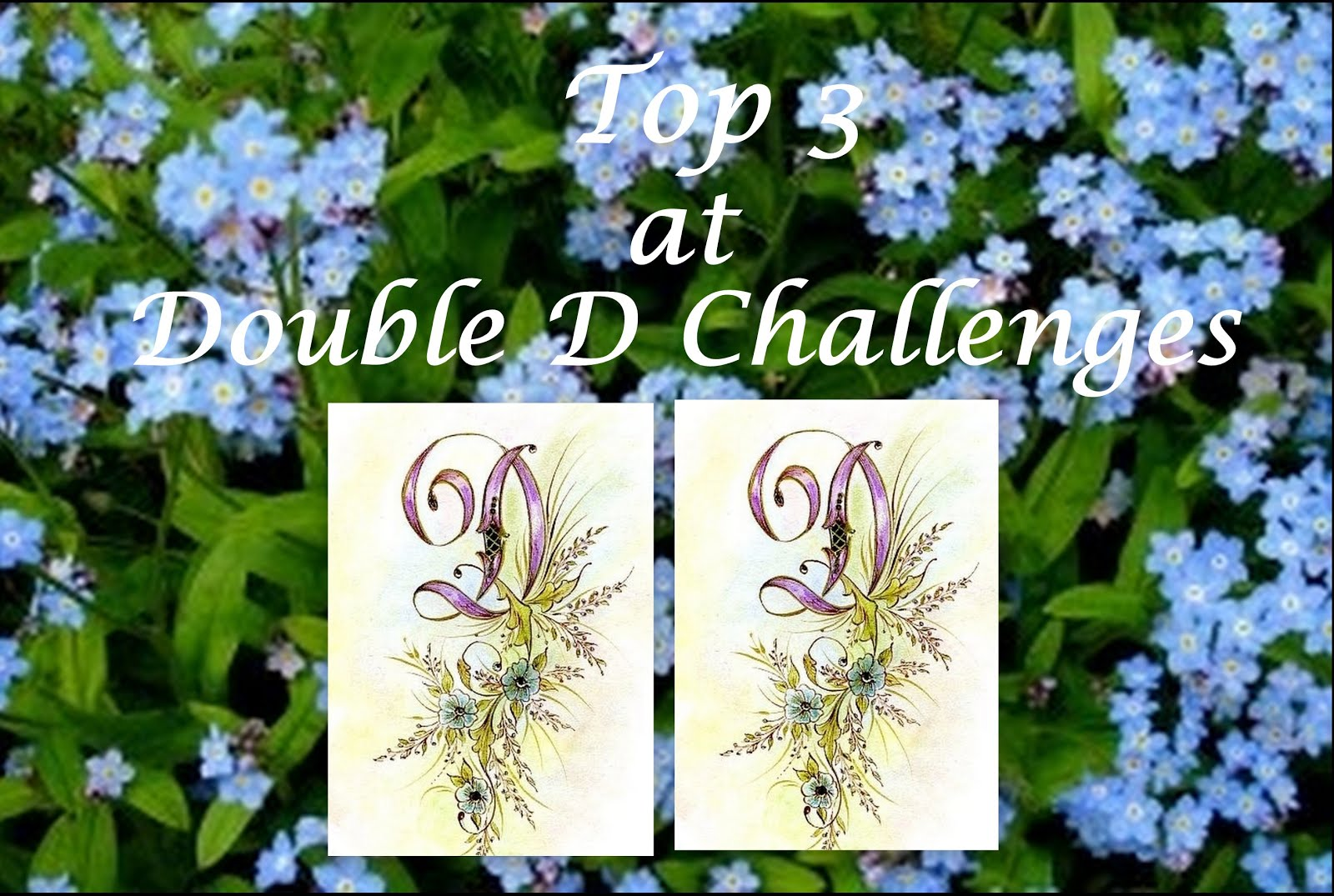 Double D Challenge top three