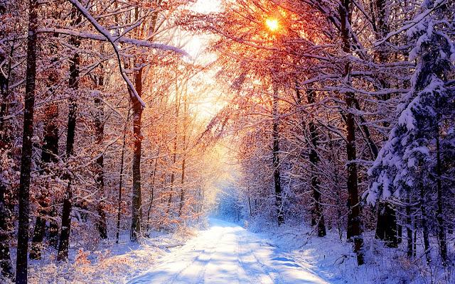 Rua com neve