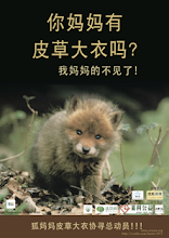 No Fur China Campaign