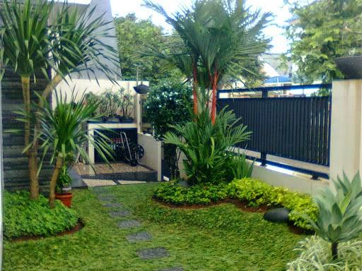 Desighn taman minimalis | jasa pembuatan taman minimalis | suplier tanaman hias dan rumput taman