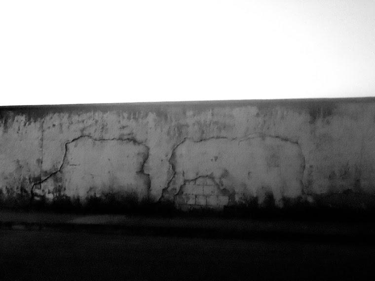 CA - mapas & elefantes  - belo horizonte-MG / BRASIL
