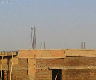 Image: Birds on a construction work enjoying the morning.