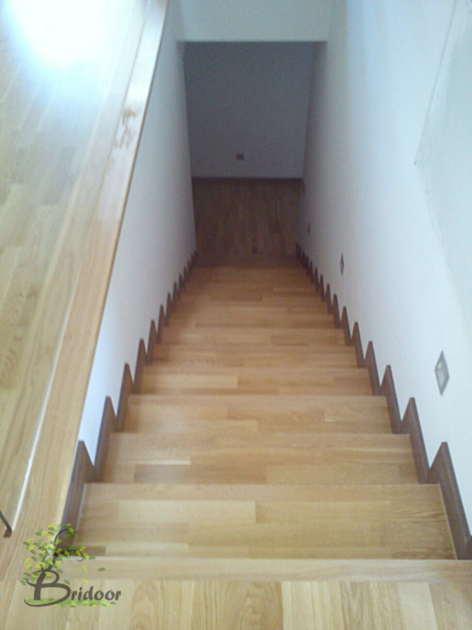 escalon men Juan escalon is a practicing thoracic surgery doctor in orlando, fl.