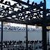 Τα κλουβιά της Αθηνάς