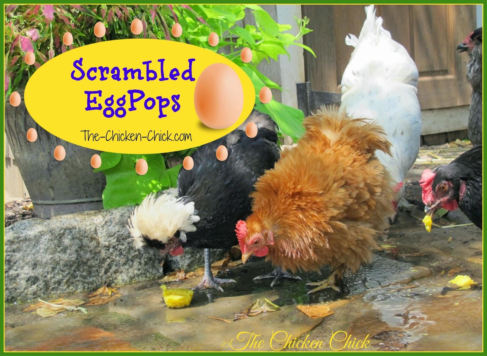 Scrambled Eggpops