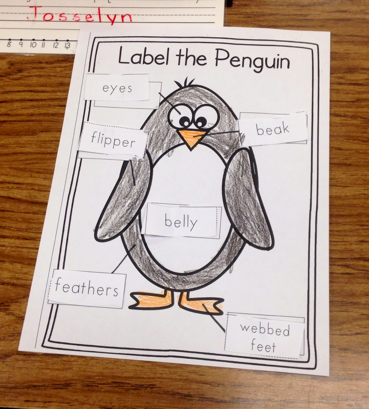 A Spoonful Of Learning  Penguins