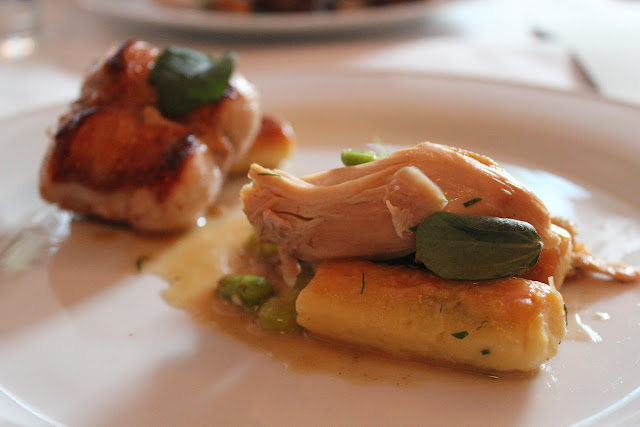 Rabbit and gnocchi at Beacon Hill Bistro, Boston, Mass.