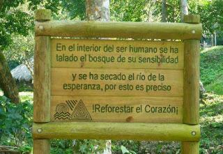 poemas+ecologia+medio+ambiente+contaminacion+tala+arboles