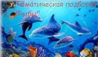 """ТЕМАТИЧЕСКАЯ ПОДБОРКА """"РЫБЫ"""""""