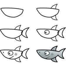 Cara Menggambar Ikan Hiu