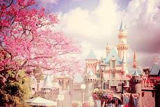 Disney dream.