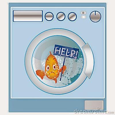 Mesin Pencuci Ikan