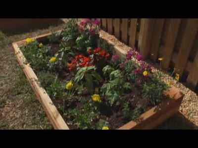 Beautiful flowers create a flower bed and make a good plan for Creating a flower bed