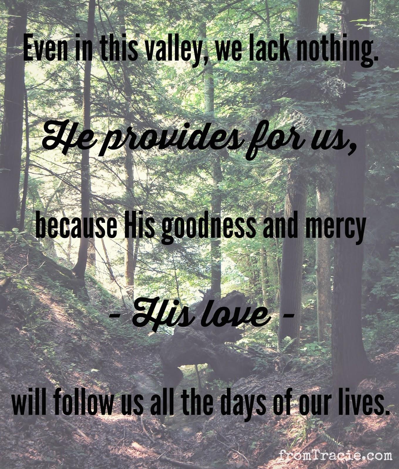 Psalm 23 God Provides