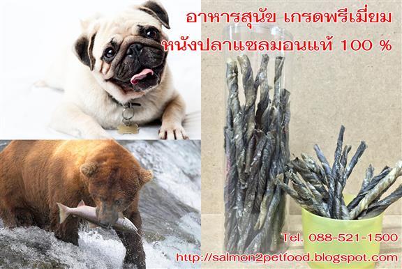 อาหารหมาราคาส่ง , ขายส่งอาหารสุนัข royal canin, อาหารหมา ราคา ถูก , ของขบเคี้ยว สุนัข , ซื้อ อาหาร สุนัข , ราคา อาหาร สุนัข , กระดูก สุนัข ขายส่ง , ร้าน ขายส่ง อาหาร สุนัข