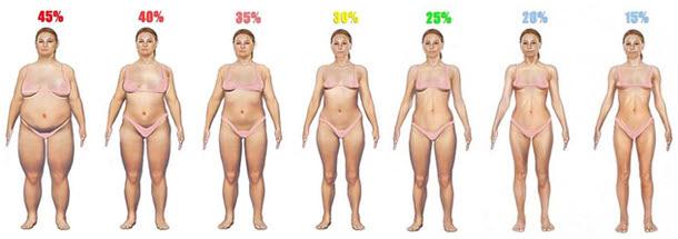 女子体脂肪率イラスト 45% 40% 35% 30% 25% 20% 15%