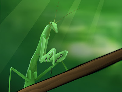 3d_wallpaper_window7_green