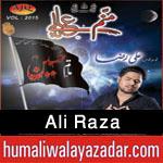 http://www.humaliwalayazadar.com/2015/10/ali-raza-nohay-2016.html