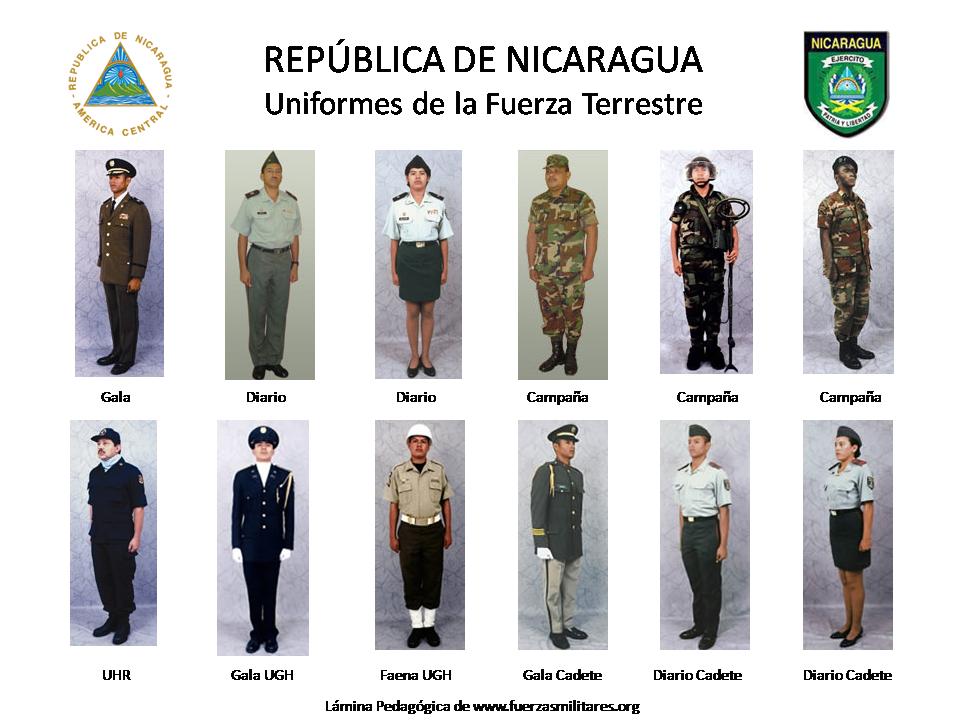 fuerza terrestre venezuela: