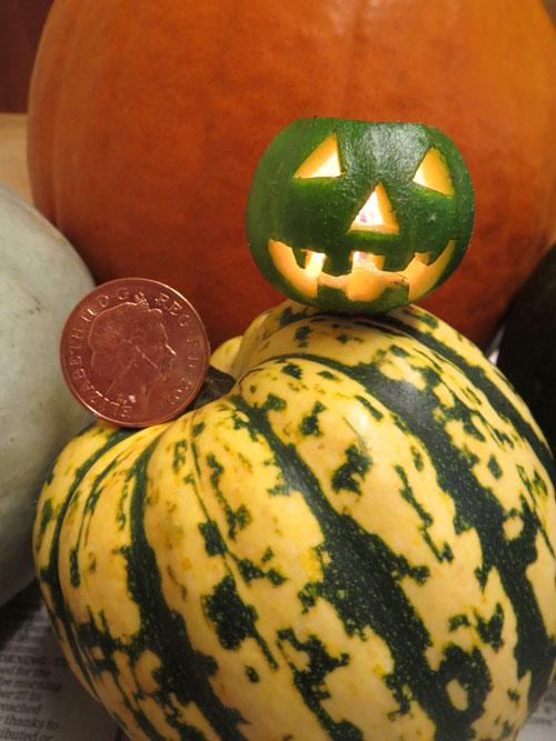 worlds smallest carved pumpkin