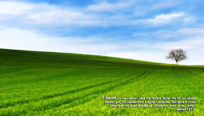 Quando estamos numa luta difícil, a graça do Senhor nos alcança