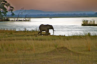 Zimbabwe 2012