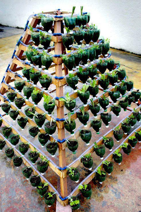 reuse waste water or cold drink plastic bottles to make a beautiful garden, pollution control ideas, Creative garden ideas from waste materials