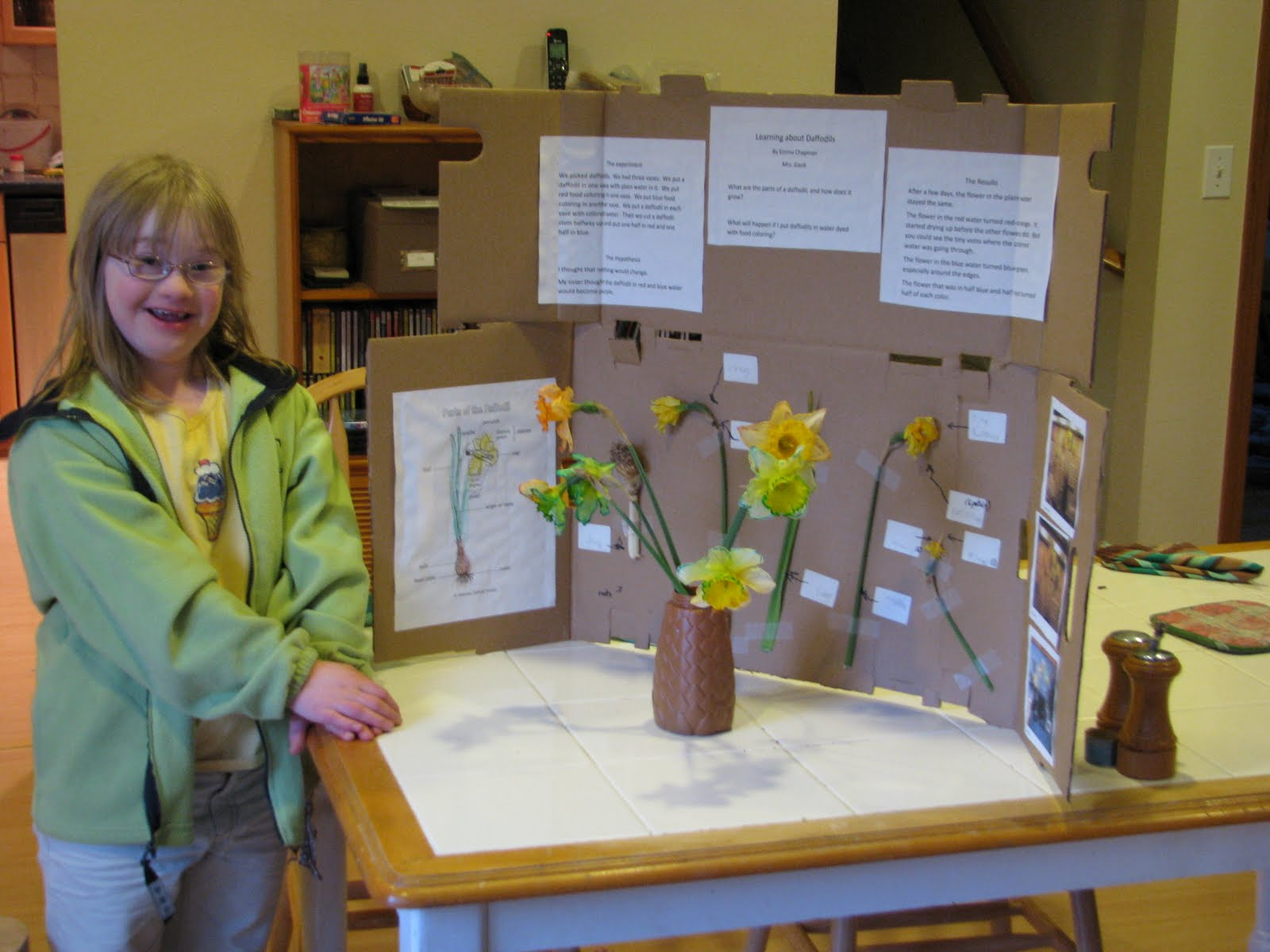 science fair projects with food Get dozens of science fair projects, for every grade – elementary, middle school, or high school includes a list of resources and last-minute ideas.