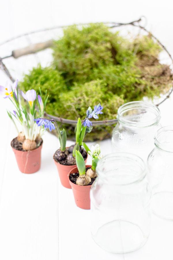 DIY Frühlingsdeko aus Moss, Frühblühern und Joghurtgläsern!