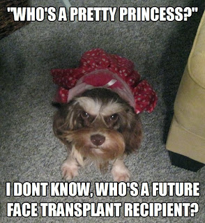 Who's a pretty princess?