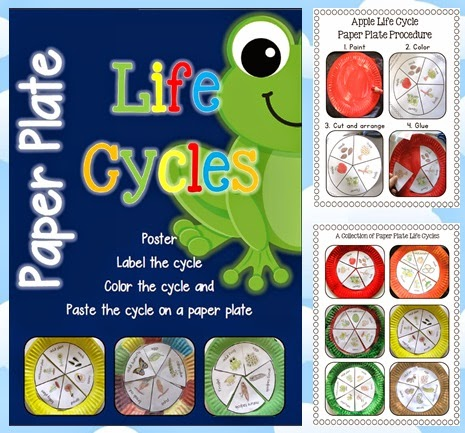 Paper Plate Life Cycles mini science and art activity for various life cycles