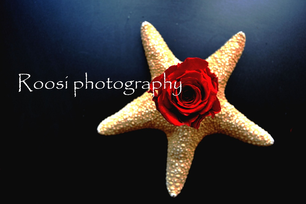 Roosi photography