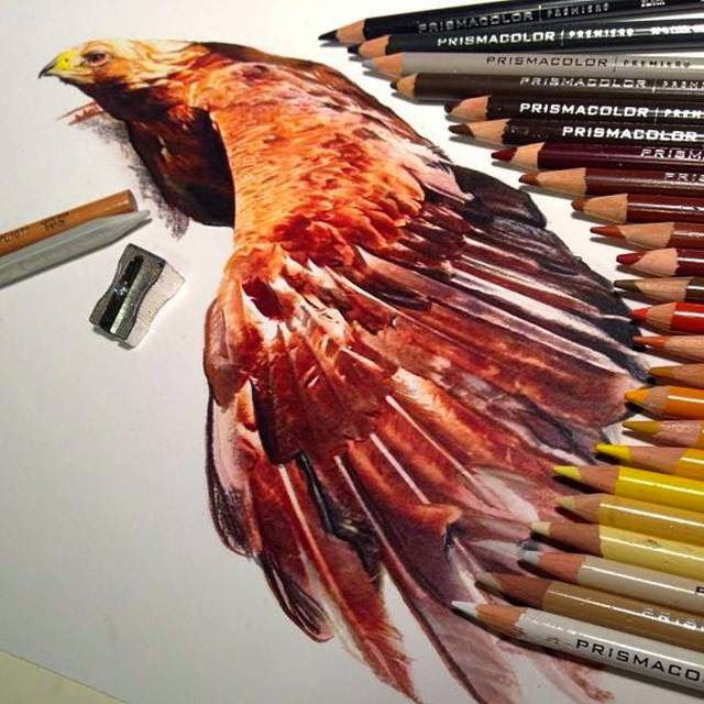 Artist Karla Pencil Color Realistic Artwork