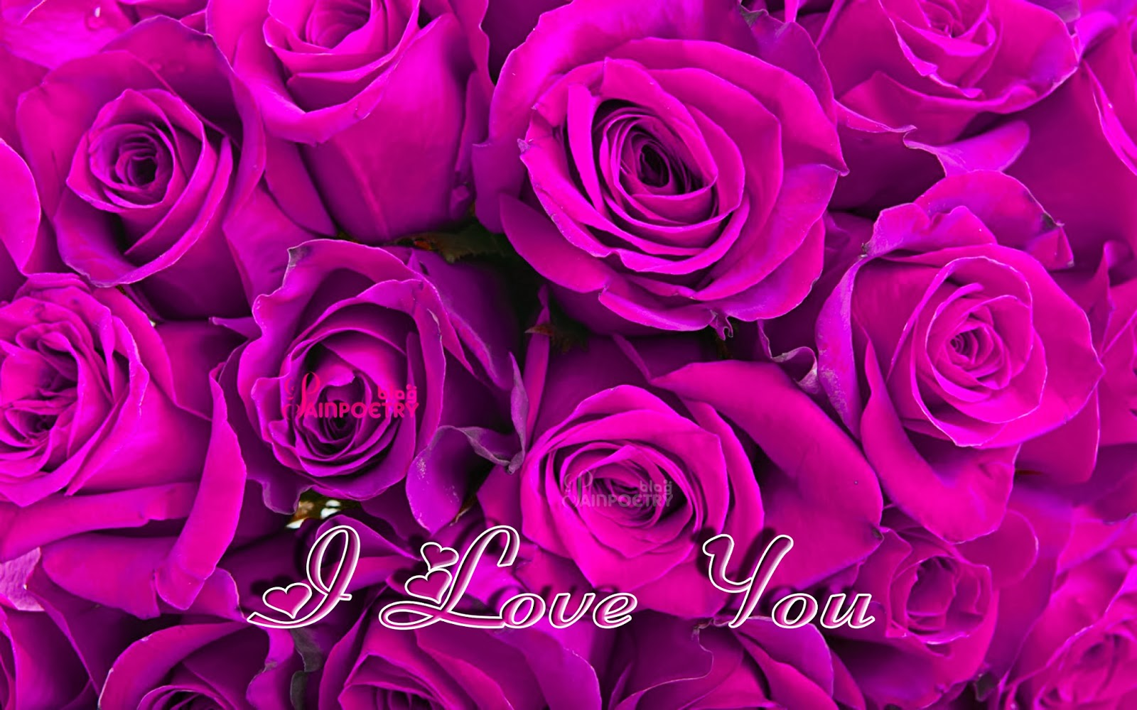 Love-Wallpaper-With-Lot-Of-Flowers-Image-Wide-HD