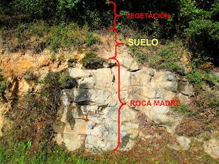 Ciencias naturales tipos de suelo roca madre for Suelos y tipos de suelos
