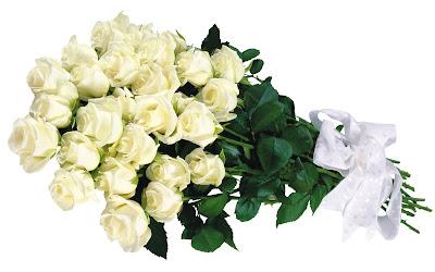 White Roses - Full Hd Wallpapers