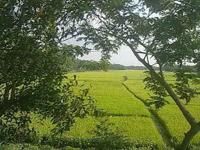How beautiful is bangladesh